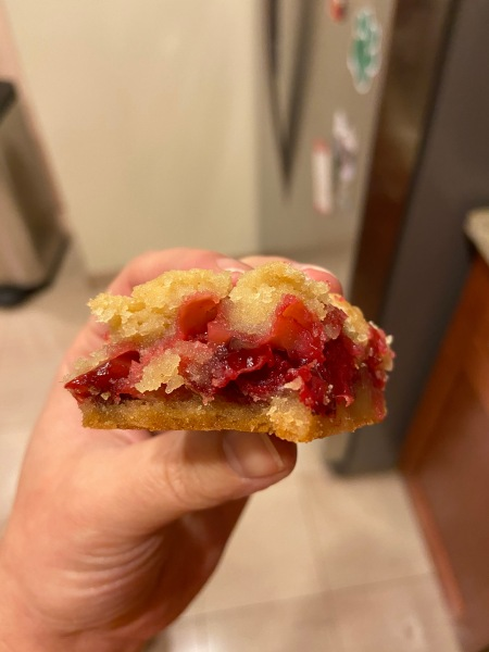 20191216 Cranberry Cookie Bars 02